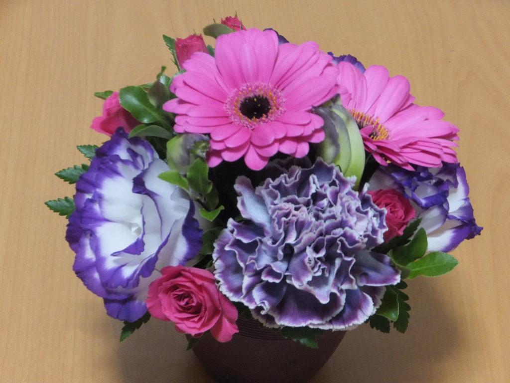 花がご1 写真