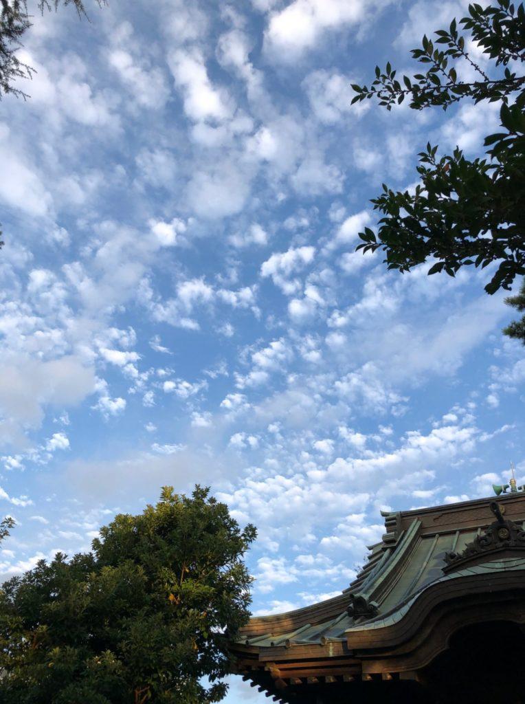 18-037 雲