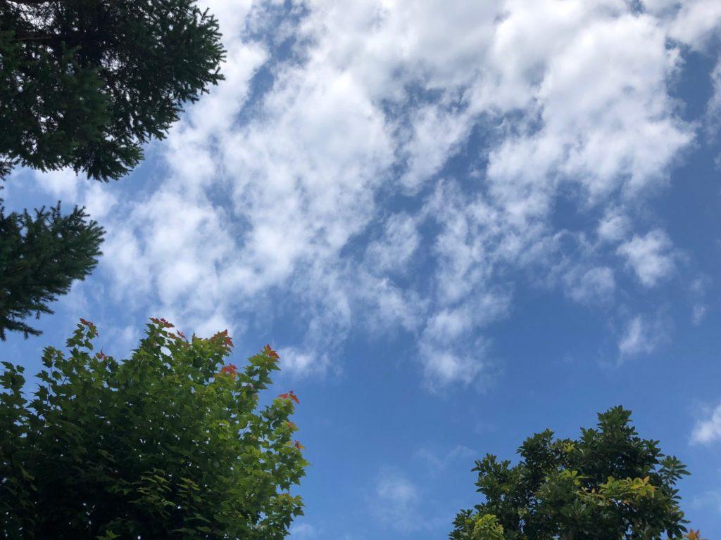 20-011 梅雨明け