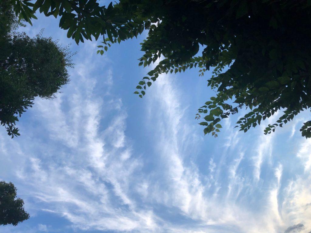 21-07-01 流れ雲