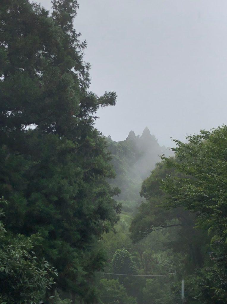 21-06-01 山の中